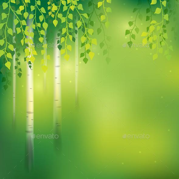 GraphicRiver Birch Background 10678878