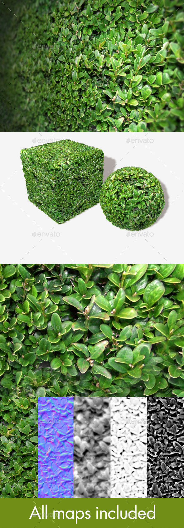 Shrub Seamless Texture - 3DOcean Item for Sale