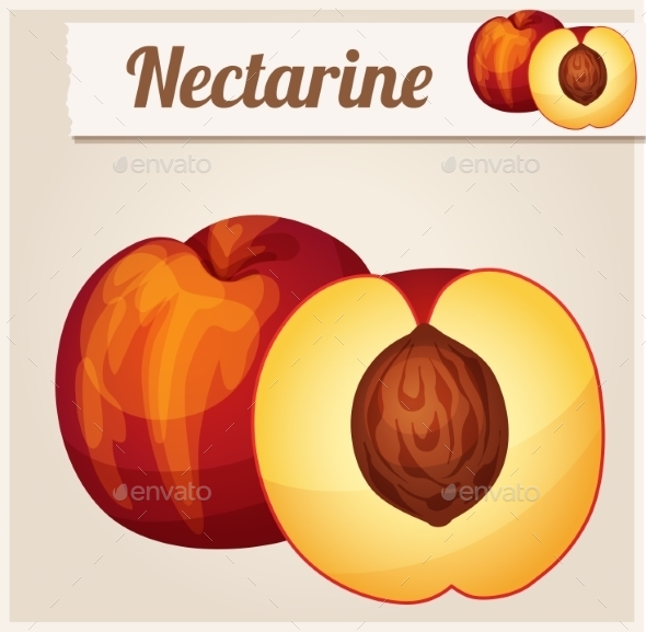 GraphicRiver Nectarine Detailed Vector Icon 10685094