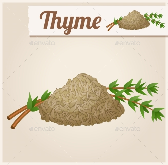 GraphicRiver Dried Thyme 10685140