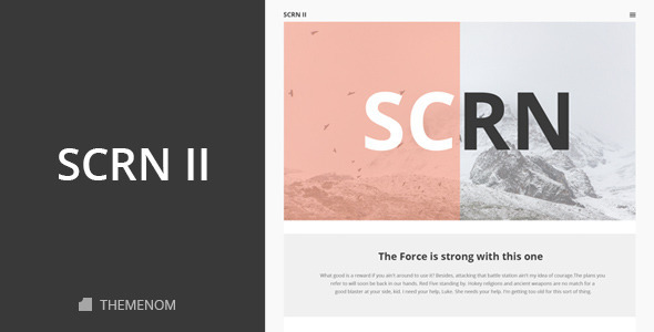 ThemeForest SCRN II Creative PSD Template 10685365