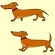 Dog four animations - ActiveDen Item for Sale