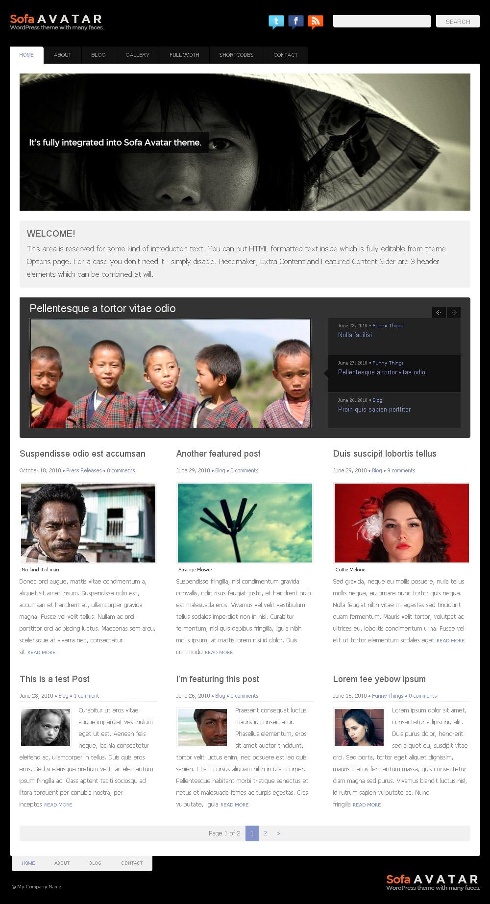 Sofa Avatar - WP Theme with many faces -