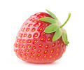 Strawberry - PhotoDune Item for Sale