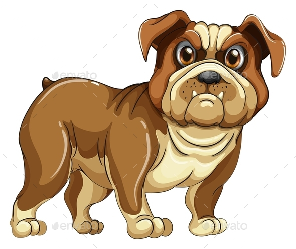 GraphicRiver Bulldog 10689342
