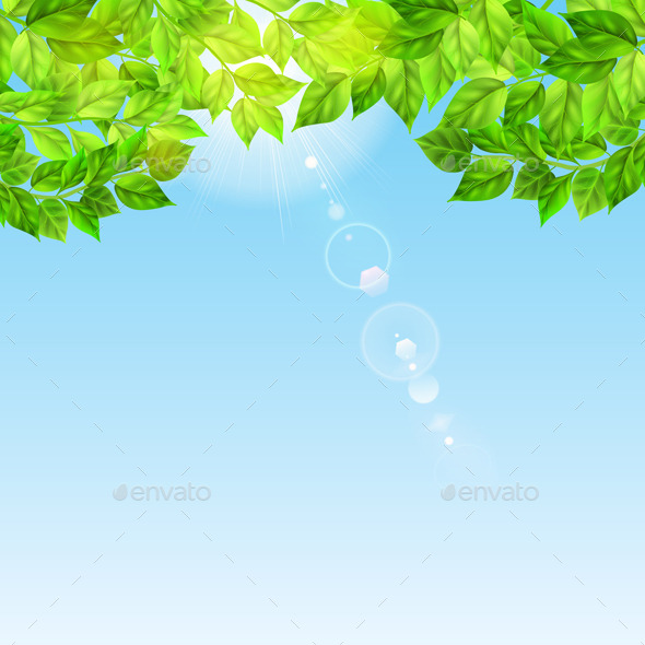 GraphicRiver Blue Sky With Sun and Leaves 10694509