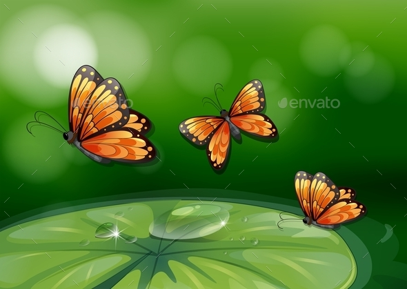 GraphicRiver Butterflies and Water Lily 10695834