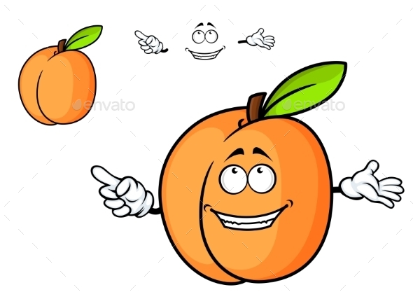 GraphicRiver Cartoon Apricot 10714022