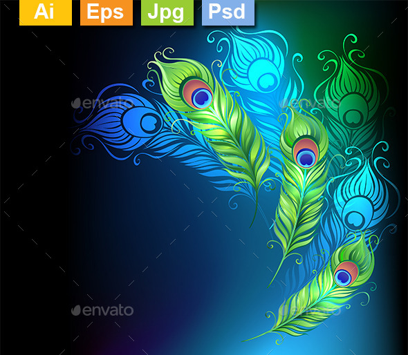 GraphicRiver Bright Peacock Feathers 10715377