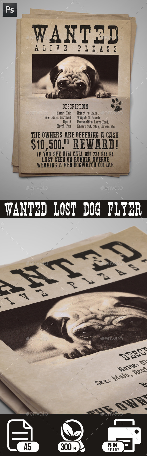 GraphicRiver Wanted Lost Dog Flyer 10726382