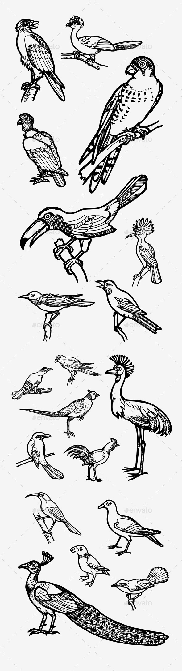 GraphicRiver Birds 10729996