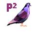 PurplePigeon