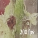 Lettuce in Water - VideoHive Item for Sale