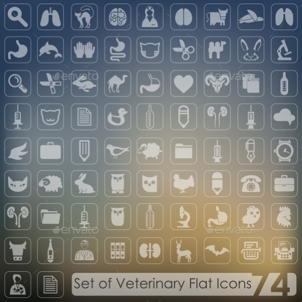 GraphicRiver Set of Veterinary Icons 10736196