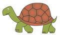 tortoise - PhotoDune Item for Sale