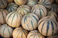Ripe fresh melons pile in a farmers market - PhotoDune Item for Sale