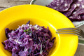 Plate With Red Cabbage Risotto - PhotoDune Item for Sale