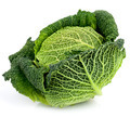 Savoy Cabbage On White - PhotoDune Item for Sale