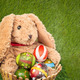 Rabbit, sit and holding empty basket on grass for happy easter e - PhotoDune Item for Sale