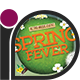 Spring Party Flyer • Spring Fever - GraphicRiver Item for Sale