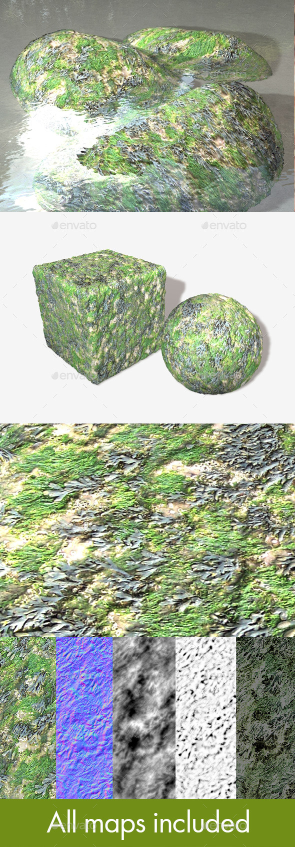 3DOcean Seaweed and Moss Seamless Texture 10759702