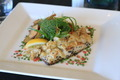 Dish Barramundi Restaurant - PhotoDune Item for Sale
