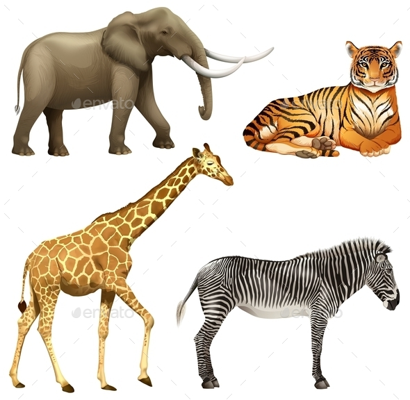 GraphicRiver Four African Animals 10762420
