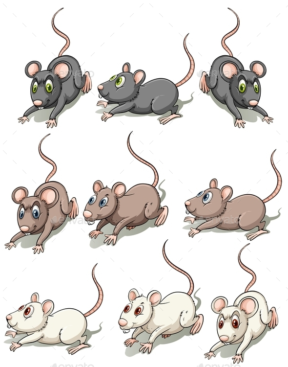 GraphicRiver Group of Mice 10763190