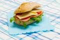 healthy sandwich - PhotoDune Item for Sale
