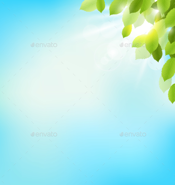 GraphicRiver Tree Foliage with Sunlight on Sky 10765904