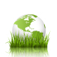 Green Planet Icon with Globe and Grass