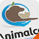 Animal Care Logo - GraphicRiver Item for Sale