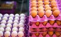 Egg in Open Market Bazaar - PhotoDune Item for Sale