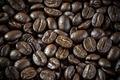 Roasted coffee - PhotoDune Item for Sale