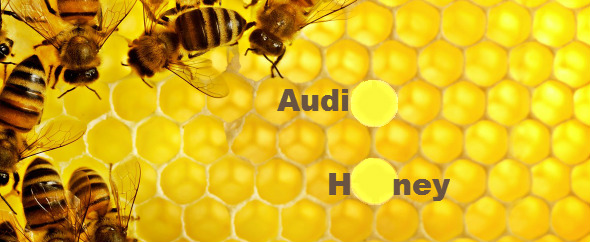 AudioHoney