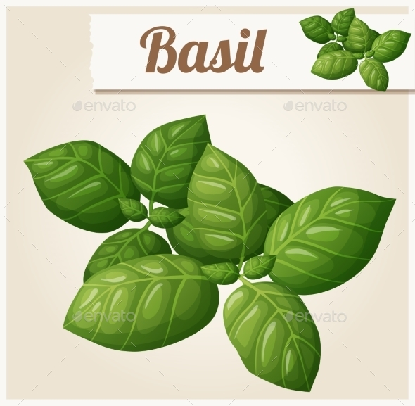 GraphicRiver Basil Leaves 10785875