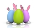 Group of rabbits in the colored eggs - PhotoDune Item for Sale