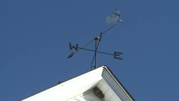 VideoHive Rooster Weather Vane 1 Of 3 10791001