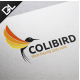Colibird  - GraphicRiver Item for Sale