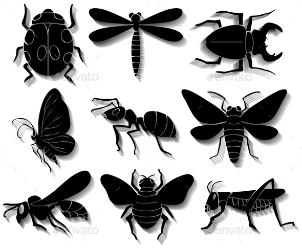 GraphicRiver Set of Insects 10794604