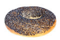 Bagel with Poppy Seeds Isolated on White - PhotoDune Item for Sale