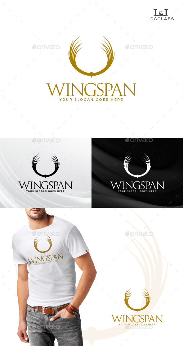 GraphicRiver Wingspan Logo 10807144