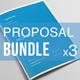 Business Proposal Bundle   Volume 2 - GraphicRiver Item for Sale