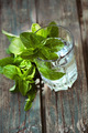 Mint drink - PhotoDune Item for Sale