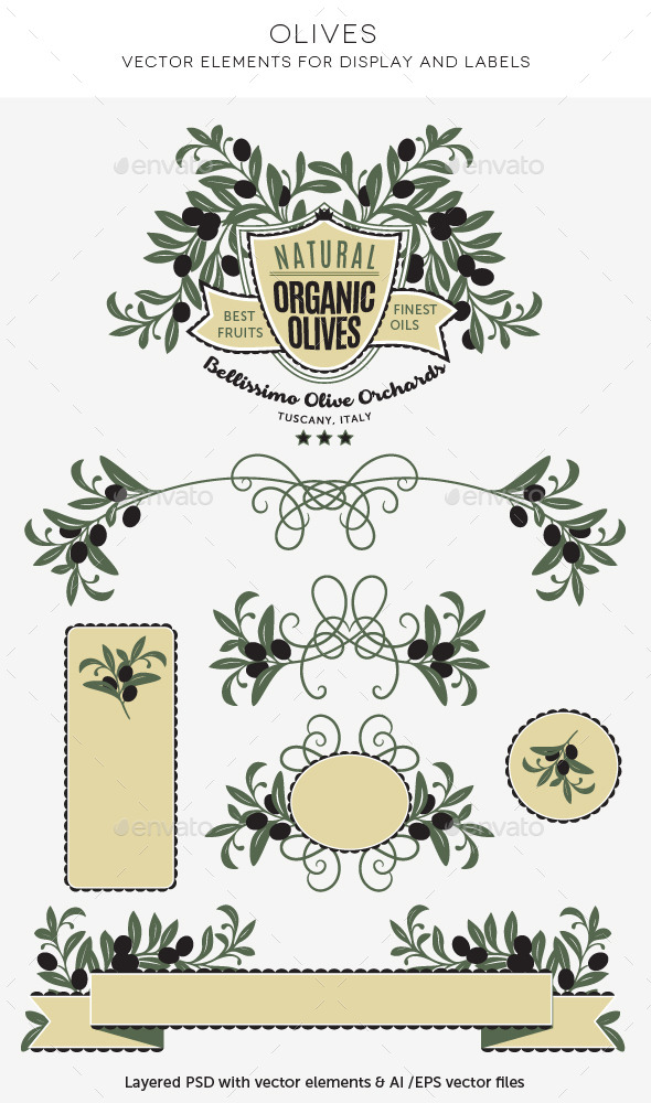 GraphicRiver Decorative Olives Label and Badge Elements 10809685