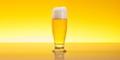Glass full of Beer