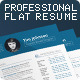 Professional Flat Resume Set - GraphicRiver Item for Sale