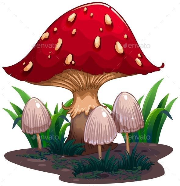 GraphicRiver Mushroom 10818632