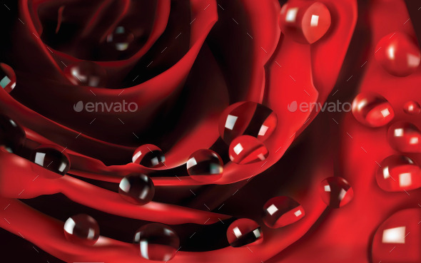 GraphicRiver Rose 10820414