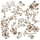 Flower Elements  - GraphicRiver Item for Sale